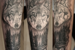 Волки с лого