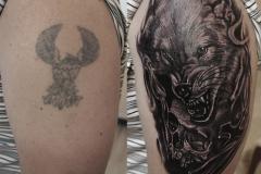 Волк с черепом До после с Лого3!