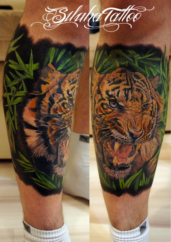 Тигр 111
